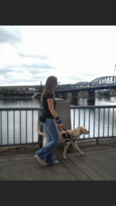 A photo of Shauna and Orion, taken in August 2009 in Portland, Oregon. Orion is a yellow Labrador retriever and is wearing his GDB harness and leash. Shauna has long brown hair, and is wearing sunglasses, a black T-shirt, blue jeans, and white running shoes. Shauna and Orion are walking along a walkway, with the waterway, and the Hawthorne Bridge in the background. This photo is a side shot of handler and guide dog working.